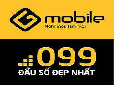 Bạn đang cần tìm hiểu về đầu số 099 là mạng gì?