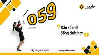 Đầu số 0595 là mạng gì và vì sao nên dùng sim đầu số 0595