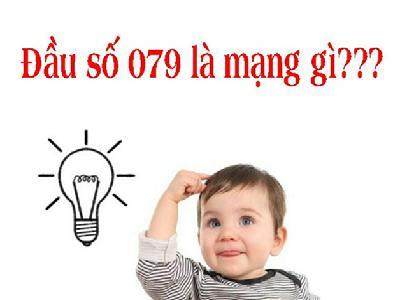 Đầu số 0791 là mạng gì bạn có thắc mắc hay không?
